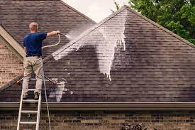Roof Cleaning for the Homeowner